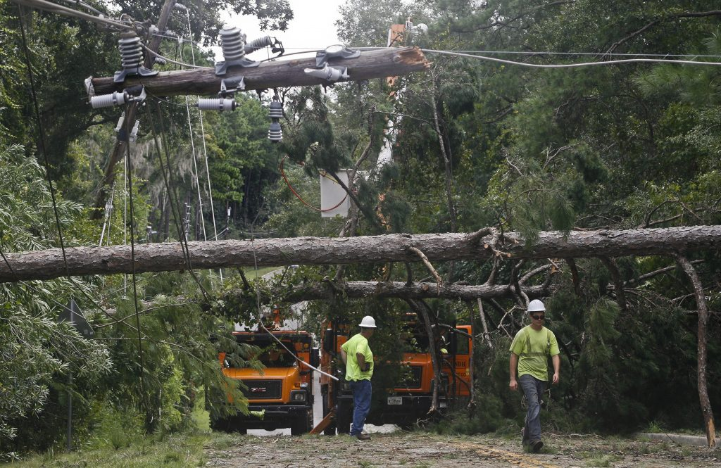 Workers remove downed trees during cleanup operations in the aftermath of Hurricane Hermine in Tallahassee, Florida September 2, 2016. Photo by Phil Sears/REUTERS
