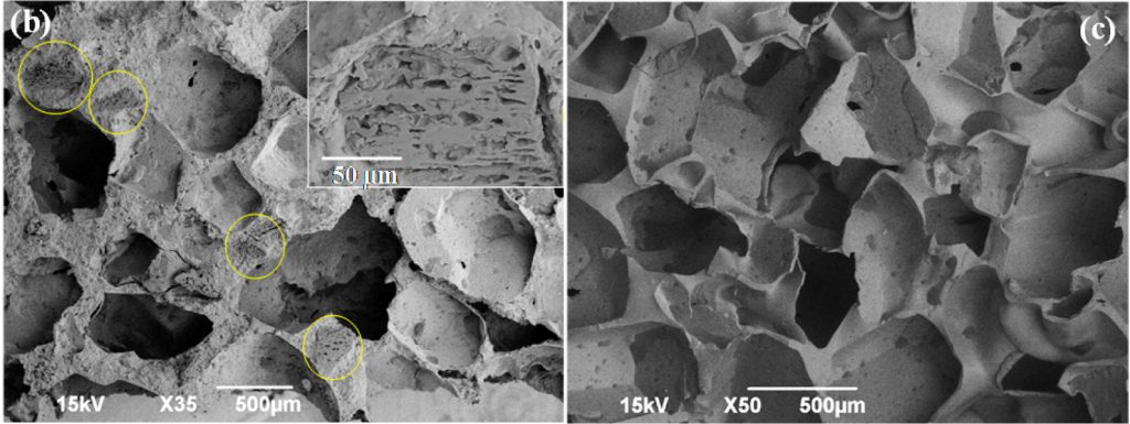Left panel: Bioelastic foam with the spent coffee powder indicated by the yellow circles and the inset. Right panel: Pure elastic foam without coffee powder. Photo by Chavan et al., ACS Sustainable Chem. Eng., 2016