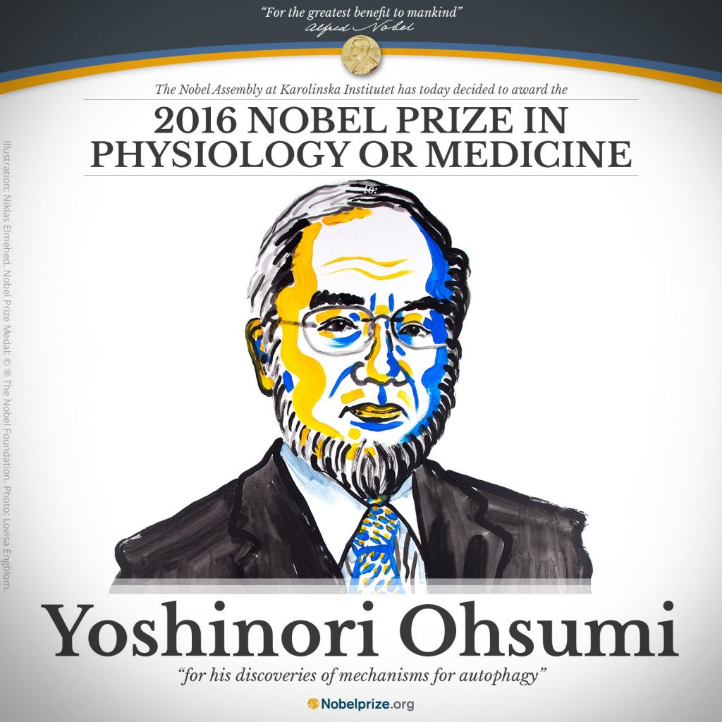 Yoshinori Ohsumi. Illustration by N. Elmehed. © Nobel Media 2016