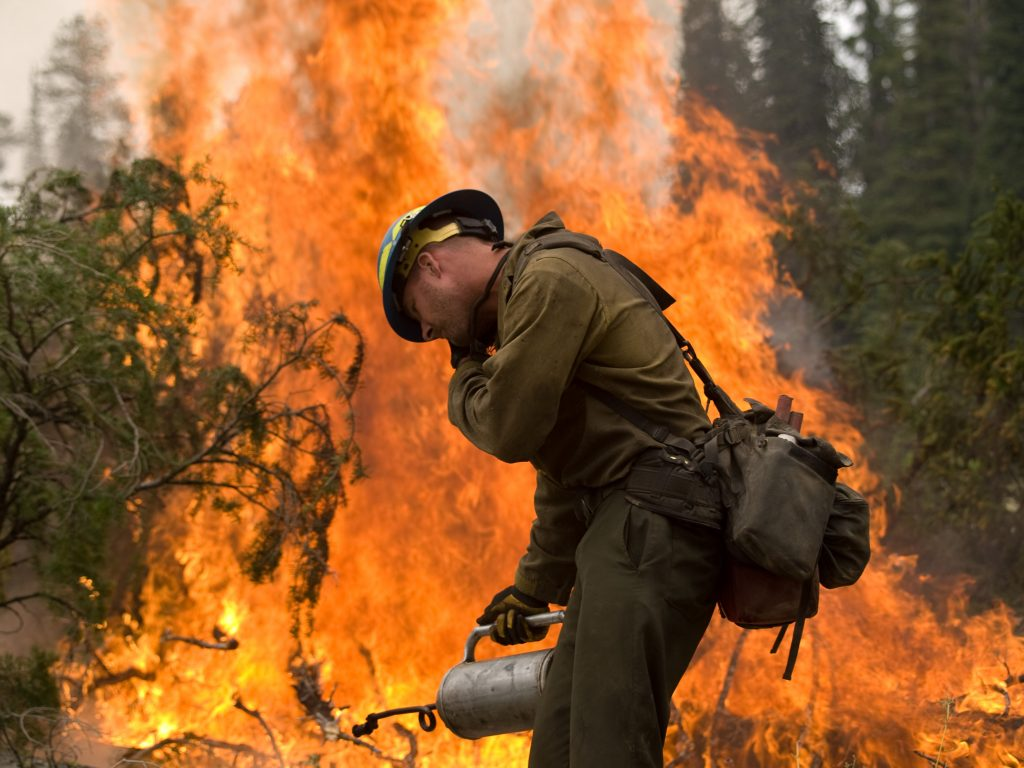 A firefighter battles the Trinity Ridge Fire in the Boise National Forest in Idaho in 2012. A recent study found anthropogenic climate change had expanded forest fires across the western U.S. over the last 30 years. Photo by Kari Greer/REUTERS/US Forest Service/Handout