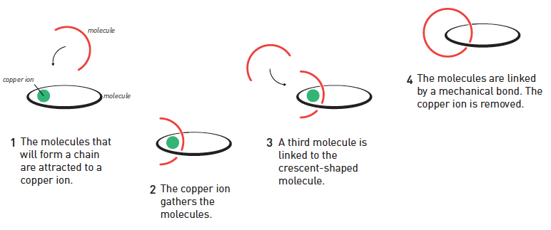 Jean-Pierre Sauvage used a copper ion to interlock molecules using a mechanical bond. Illustration by Johan Jarnestad/The Royal Swedish Academy of Sciences