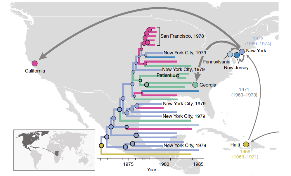 The early patterns of HIV-1 spread in the Americas. The map summarizes the main patterns of spread inferred from the comparison of HIV genomes collected in different location. The map inset shows the initial introduction of HIV-1 subtype B lineage into the Caribbean from Africa. From there, the virus spreads first to NY and subsequently to different locations in the United States. Photo by Worobey et al., Nature, 2016
