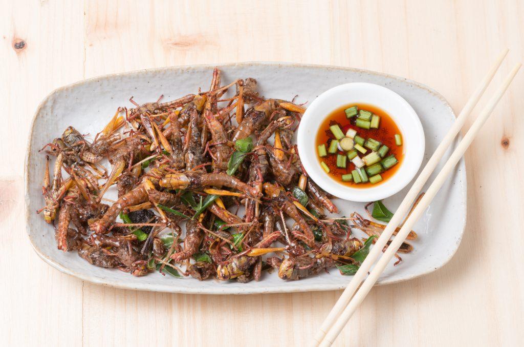 Grasshopper fried in dish on wood background. Photo by kwanchaichaiudom/via Adobe