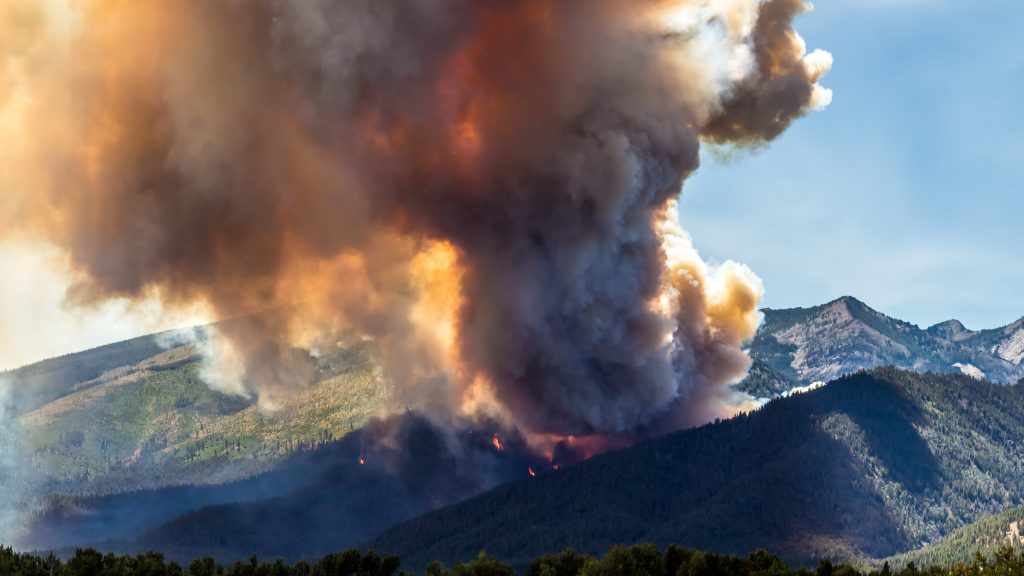Montana's Roaring Lion fire burned close to 9,000 acres late July and early August of this year. A new study says man-made climate change has expanded forest fires in this state and across the western U.S. Photo by Mike Daniels