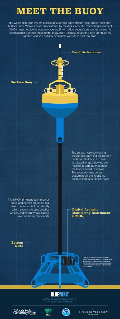 Click to view this infographic full size.