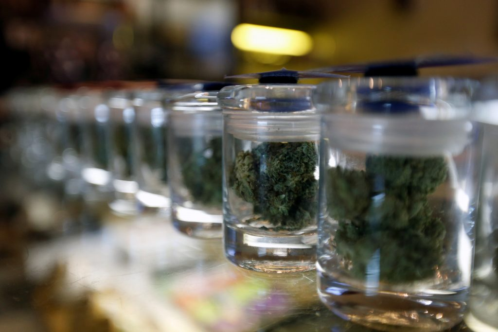 A variety of medicinal marijuana buds in jars are pictured at Los Angeles Patients & Caregivers Group dispensary in West Hollywood, California U.S., October 18, 2016. Photo by Mario Anzuoni/REUTERS