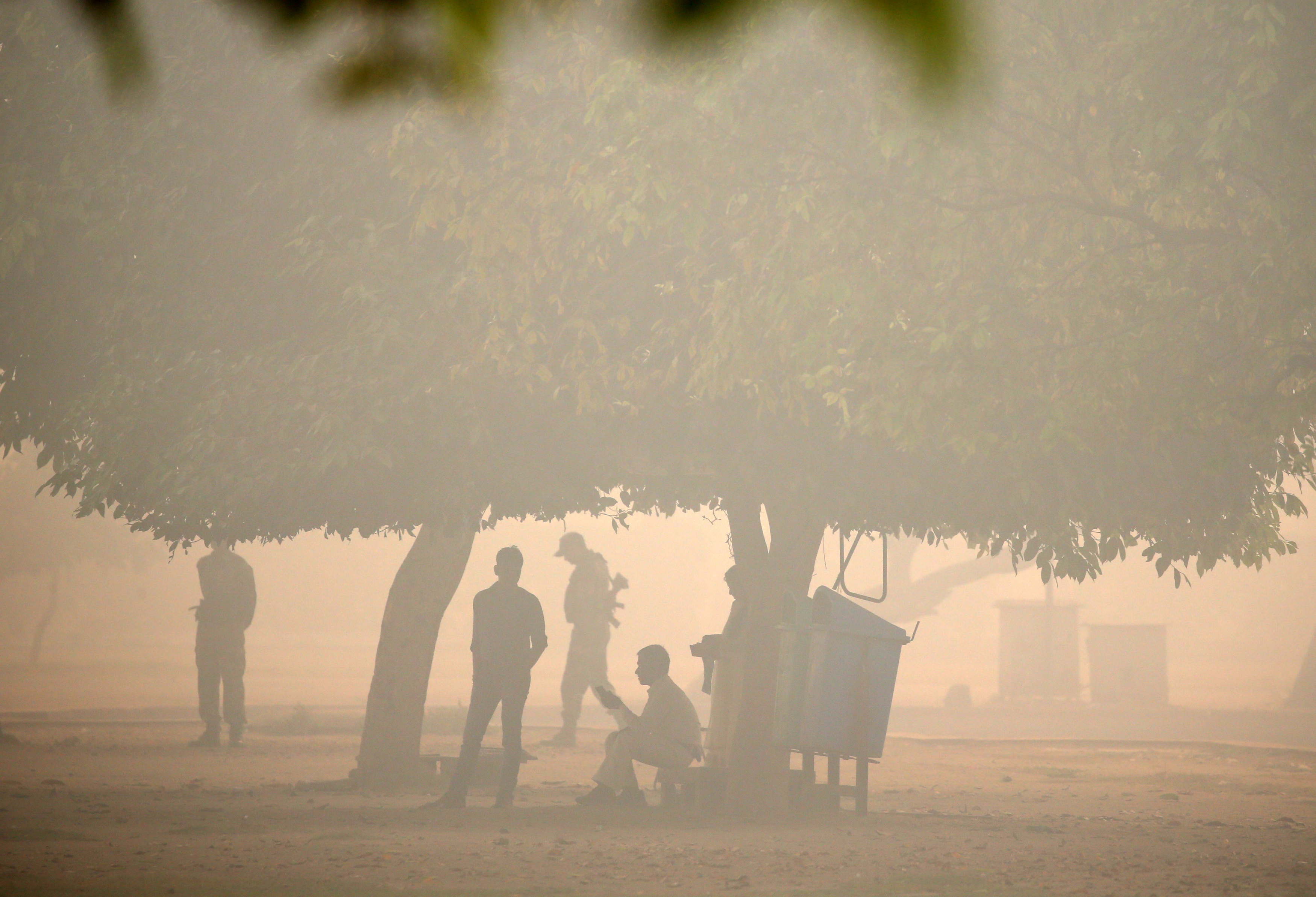 Policemen are seen in a public park on a smoggy morning in New Delhi, India, October 31, 2016. REUTERS/Cathal McNaughton - RTX2R4ND
