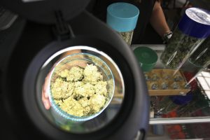 Marijuana is seen under a magnifier at the medical marijuana farmers market at the California Heritage Market in Los Angeles, California July 11, 2014. Photo by David McNew/REUTERS/File Photo