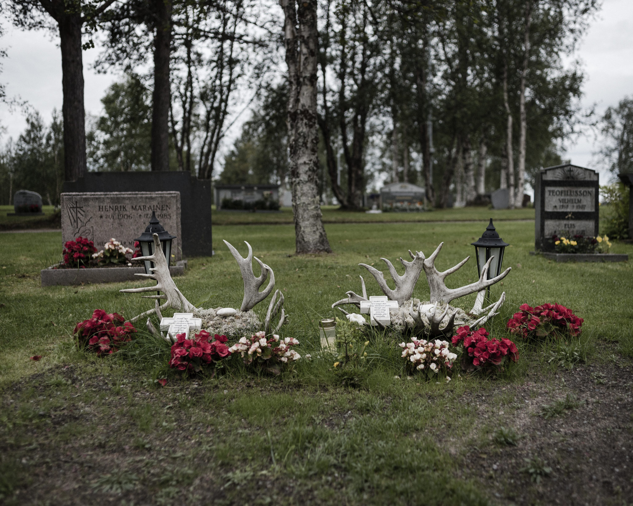 "The graves of Gustu and Heaika Marainen are decorated with flowers and antlers. On the grave, there are words in Swedish: ""It's hard to see in young days fresh flowers fall - it's hard to lose you, you were the joy for us all."" Photo by Camilla Andersen"