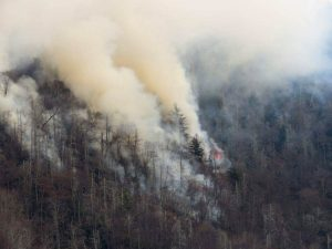 Smoke plumes from wildfires are shown in the Great Smokey Mountains near Gatlinburg, Tennessee. Photo taken Nov. 28, 2016. Photo courtesy of National Park Services/Handout via Reuters