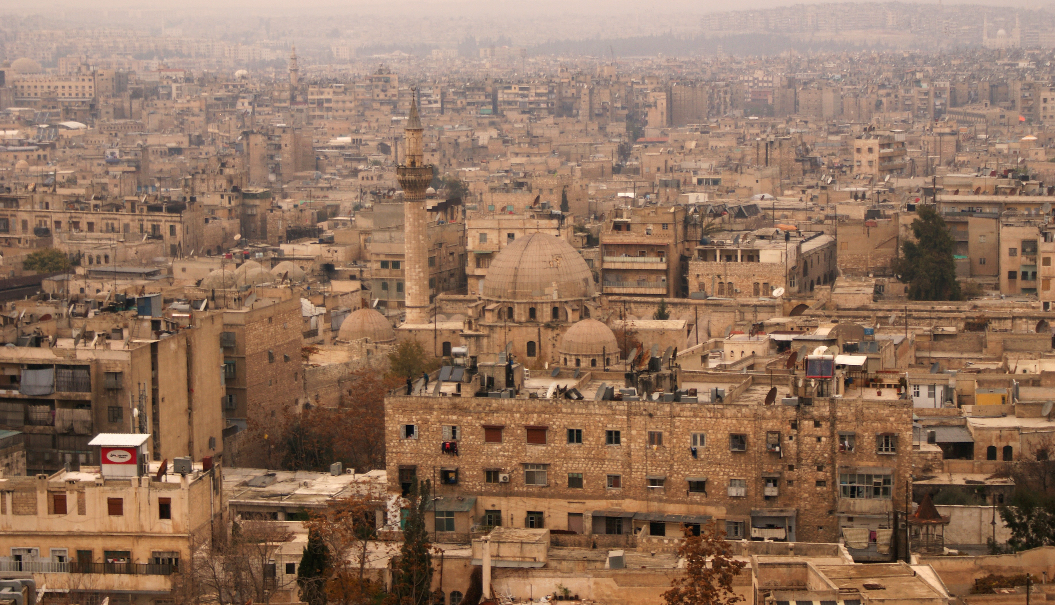 The Old City of Aleppo is viewed from the historic citadel on Dec. 11, 2009. Photo by Khalil Ashawi/Reuters