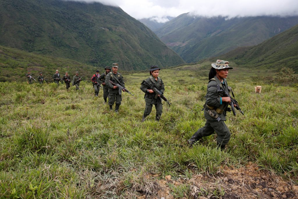 Members of the 51st Front of the Revolutionary Armed Forces of Colo…