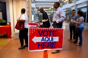 Travis County residents vote at a shopping mall in north Austin, Texas.  Photo by Robert Daemmrich Photography Inc/Corbis via Getty Images.