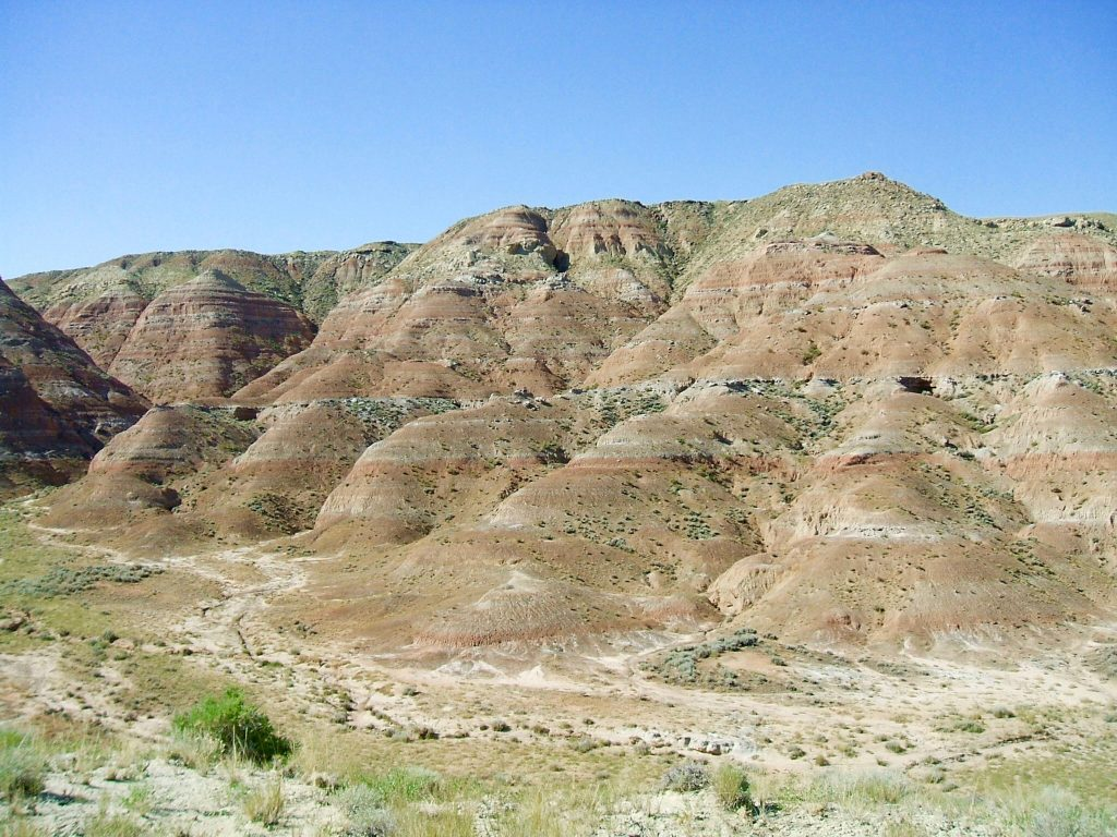 Field location within the McCullough Peaks region of the Bighorn Basin where scientists discovered evidence of mammal dwarfing caused by global warming. Fossil teeth are often found eroding out of the hills and slopes here. Photo by A. D'Ambrosia