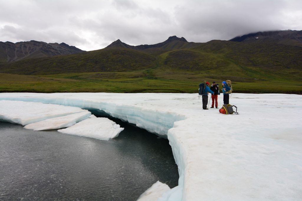 Drilling in the arctic national wildlife refuge essay writing
