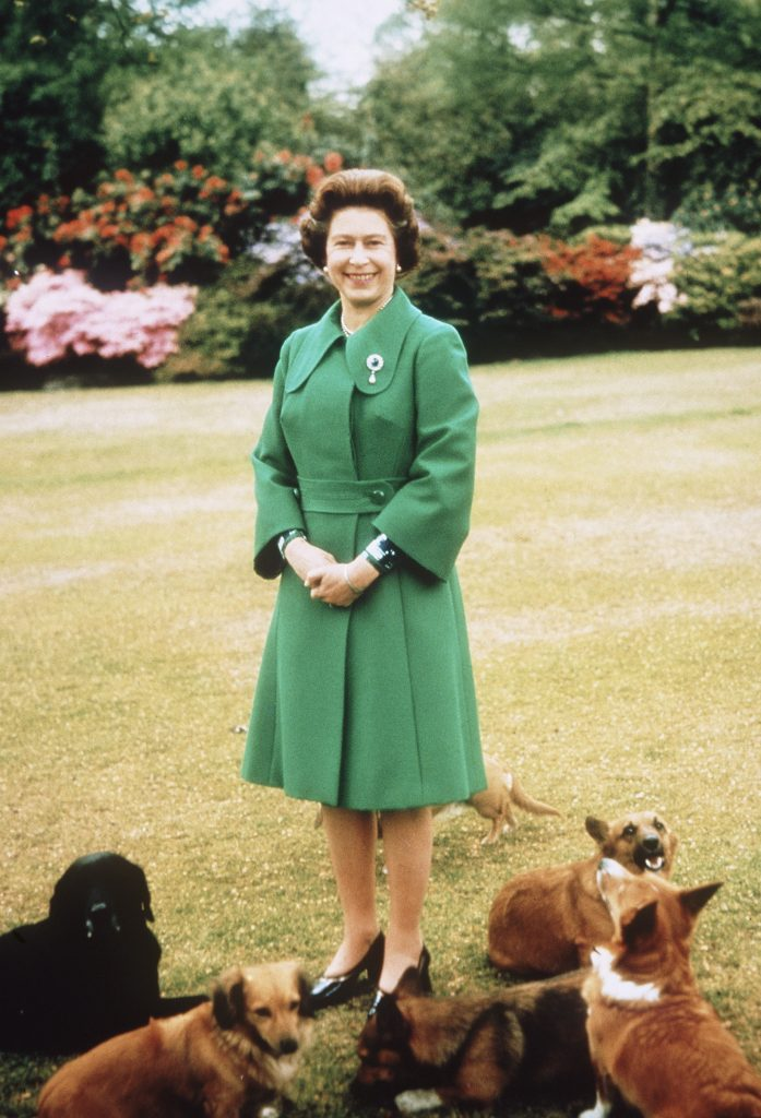 Queen Elizabeth II relaxes at Sandringham Estate with her Corgis in this undated photo by Anwar Hussein/Getty Images