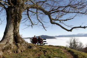 An elderly couple sits on a bench on the peak of Mount Hochwacht (988 metres/3241 ft) as high fog covers the landscape around the Swiss town of Zug November 20, 2012. Reuters/Arnd Wiegmann (SWITZERLAND - Tags: ENVIRONMENT) - RTR3ANJ2