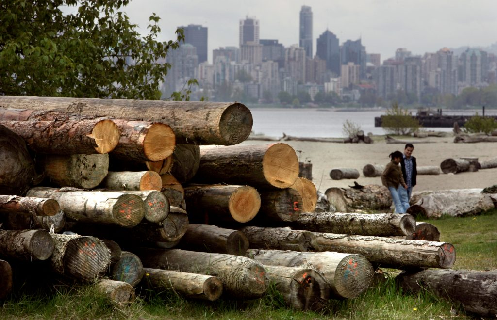 File photo of cut logs in Canada by Andy Clark/Reuters