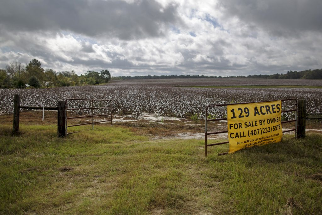 "A ""For Sale"" sign covers the gate to a cotton field in Adrian, Georgia October 28, 2015. In the southern states of Mississippi, Tennessee, Alabama and Arkansas, once the heart of cotton country, growers expect to harvest some of their smallest crops since the year after the U.S. Civil War ended, according to the oldest government data available. REUTERS/Brian Snyder PICTURE 28 OF 28 FOR WIDER IMAGE STORY ""THE LEGACY OF 'KING COTTON' IN THE AMERICAN SOUTH"" SEARCH ""KING COTTON"" FOR ALL IMAGES - R"