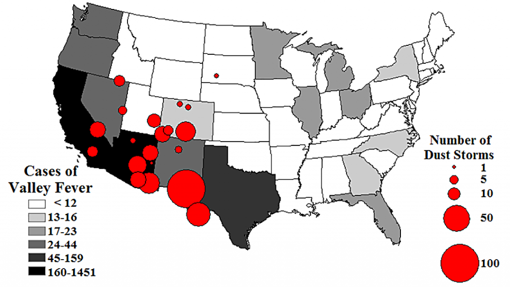 This map shows in red circles that the nation's largest number of dust storms from 1988 to 2011 are concentrated in the Southwest states. These same states are reporting the nation's highest numbers of Valley fever cases, an infectious disease caught by inhaling a soil-dwelling fungus found primarily in the Southwest. The Valley fever data is for 2011. Chart by NOAA