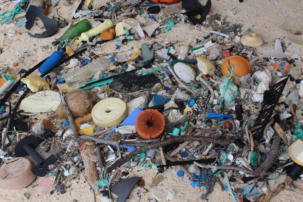 """Single use"" plastics on East Beach, Henderson Island in 2015. Photo by Jennifer Lavers"