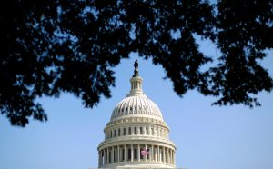 File photo of the U.S. Capitol by Kevin Lamarque/Reuters