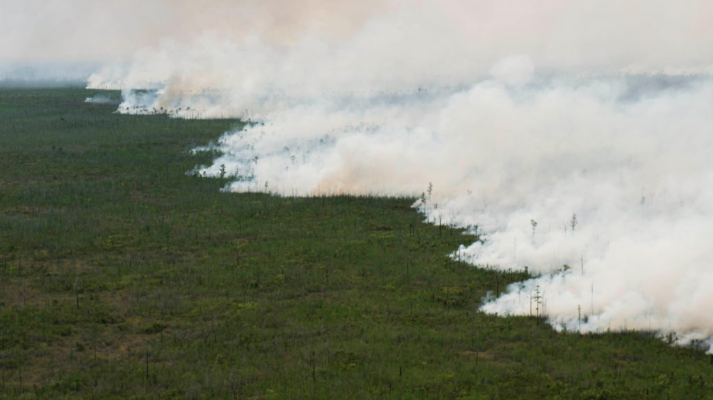 The West Mims fire burns in the Okefenokee National Wildlife Refuge in a photo released in Folkston, Georgia, on April 29, 2017. Photo by U.S. Fish and Wildlife Service via Reuters