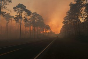 Smoke is seen during sunset as the West Mims fire burns in the Okefenokee National Wildlife Refuge, Georgia. Photo released April 29, 2017. Photo by U.S. Fish and Wildlife Service/Mark Davis via Reuters
