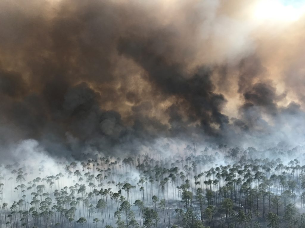 The West Mims fire burns in the Okefenokee National Wildlife Refuge, Georgia, U.S. April 25, 2017. Photo by U.S. Fish and Wildlife Service/Michael Lusk via Reuters