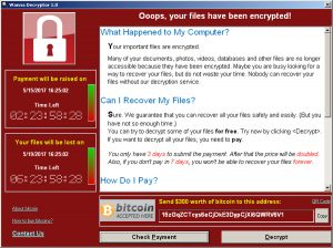 A screenshot shows a WannaCry ransomware demand, provided by cyber security firm Symantec, in Mountain View, California, U.S. May 15, 2017. Photo by Symantec/Handout via REUTERS