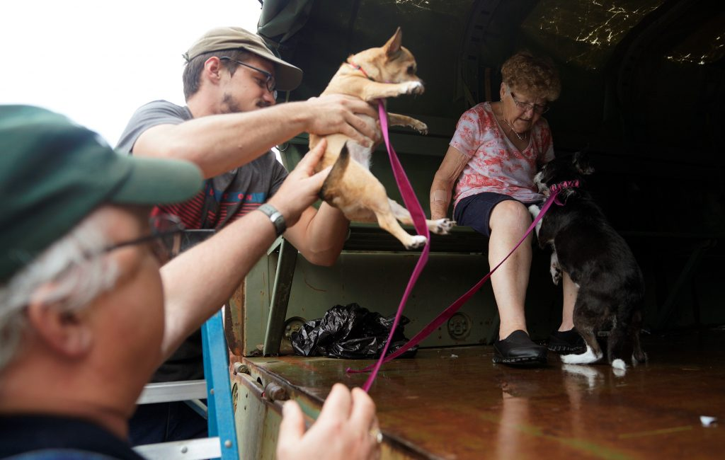 Pets are evacuated from flood waters from Hurricane Harvey in Dickinson, Texas, on Aug. 27. Photo by Rick Wilking/Reuters