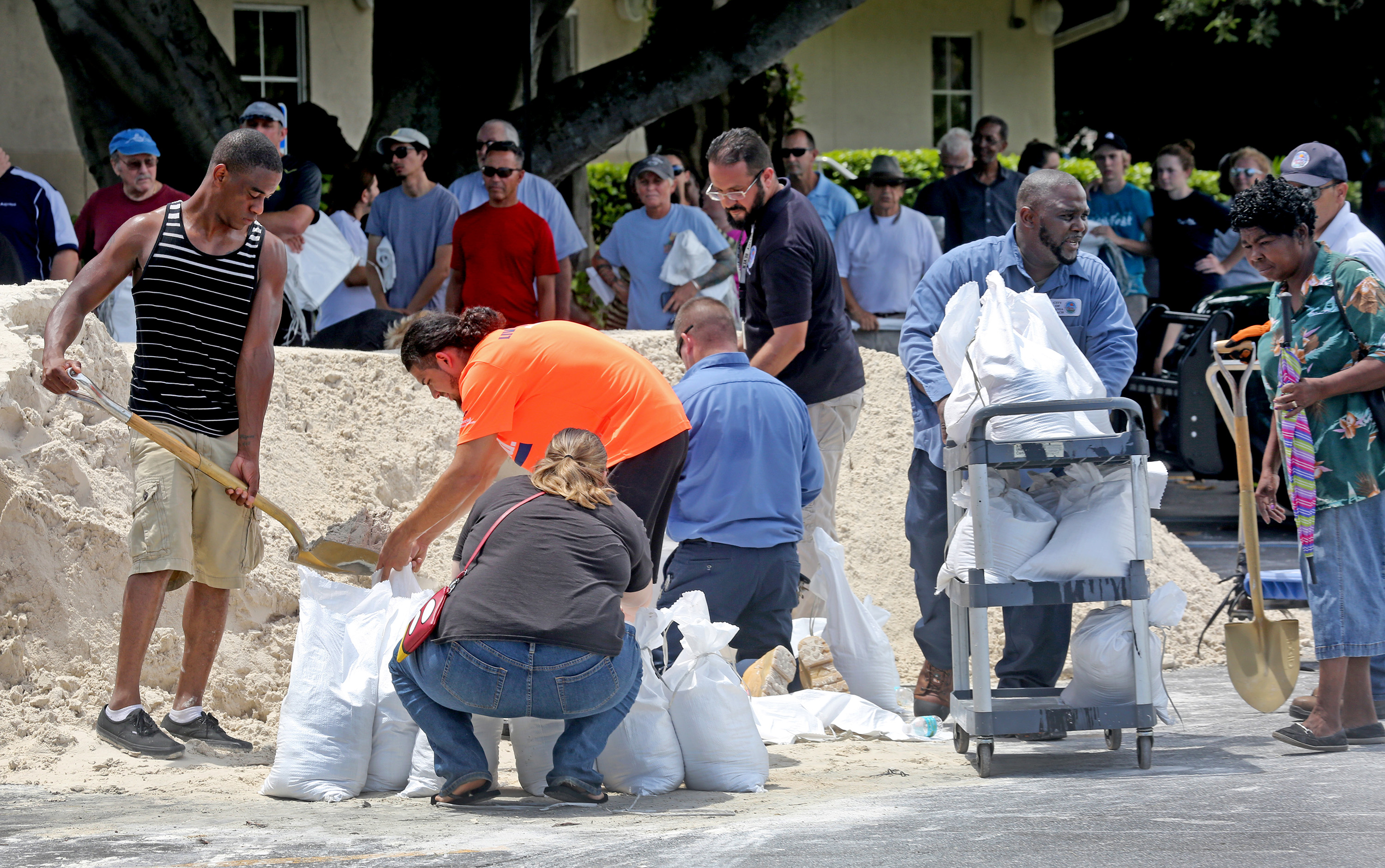 Residents fill sandbags in Dania Beach, Florida, on Sept. 7 in preparation for Hurricane Irma. Photo by Mike Stocker/South Florida Sun-Sentinel/TNS via Getty Images