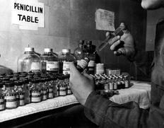 impact of penicillin on the world