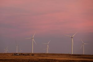 Wind turbines stand above the plains north of Amarillo, Texas