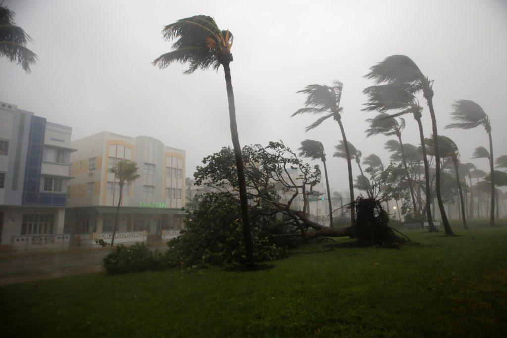 Hurricane irma makes landfall in florida keys pbs newshour heavy wind is seen along ocean drive in south beach as hurricane irma arrives at south publicscrutiny Choice Image