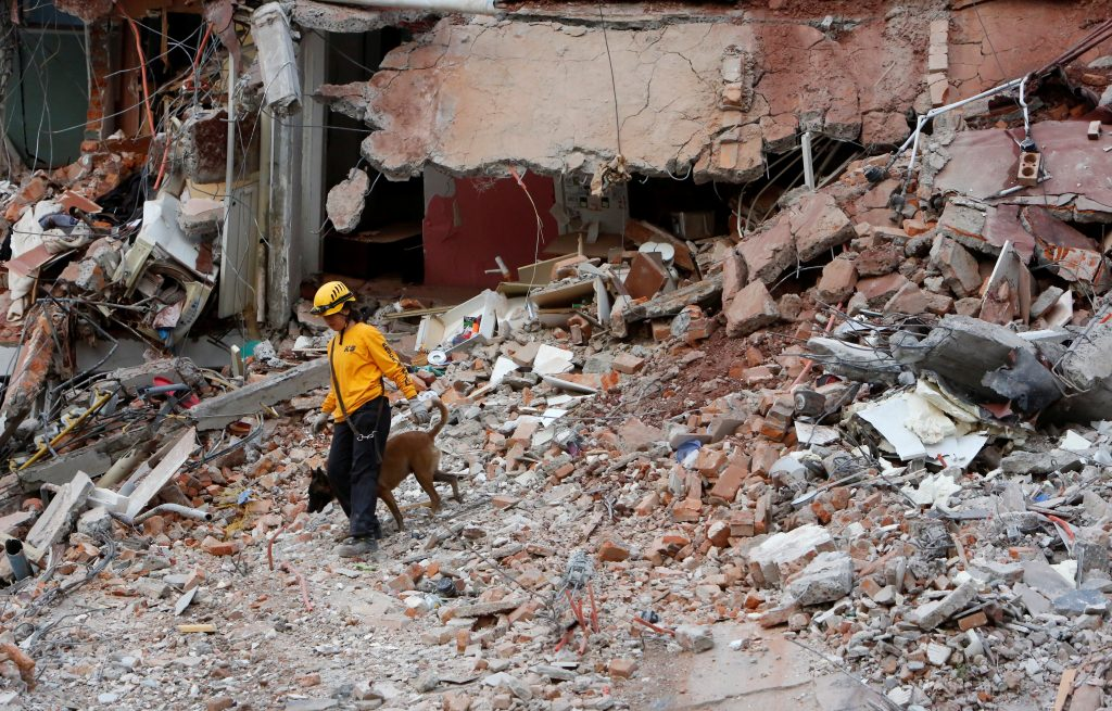 A rescue dog and his trainer work on the rubble of a collapsed building after an earthquake hit Mexico City, Mexico September 20, 2017. REUTERS