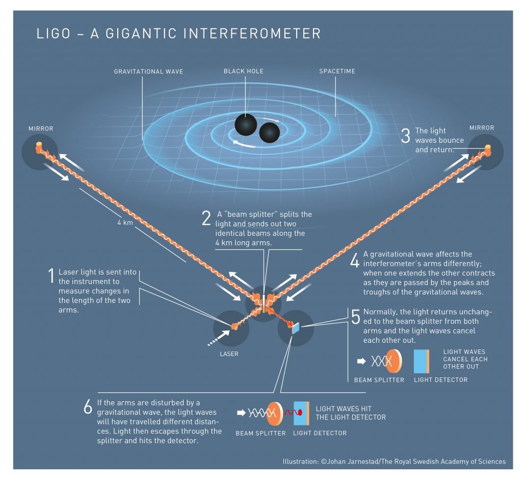 The world's first captured gravitational waves were created in a violent collision between two black holes, 1.3 billion lightyears away. When these waves passed the Earth, 1.3 billion years later, they had weakened considerably: the disturbance in spacetime that LIGO measured was thousands of times smaller than an atomic nucleus. Caption and illustration by Johan Jarnestad/The Royal Swedish Academy of Sciences