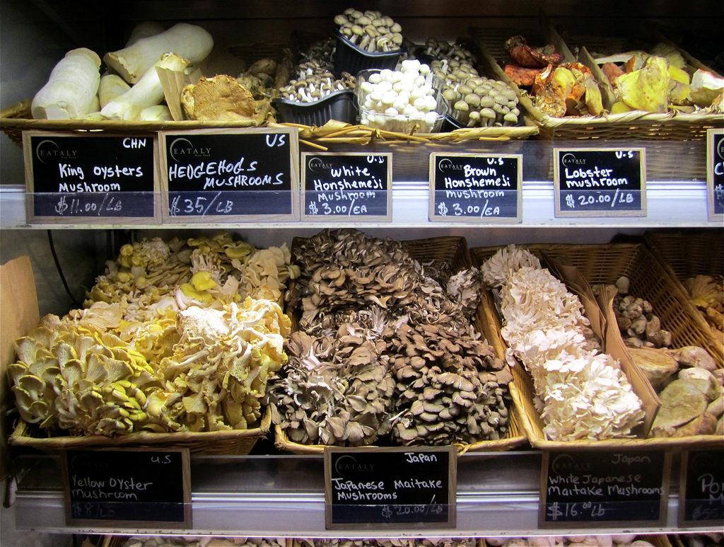 mushrooms productions