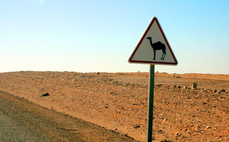 Camel crossing sign in Western Sahara. Photo by Larisa Epatko