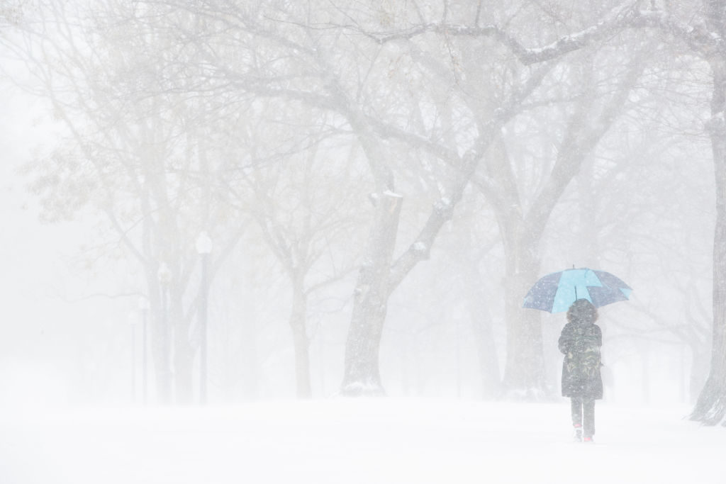 Christmas Day brought an early snowstorm that created whiteout conditions for a time in the Boston area and made a pretty canvas of the Boston Common. Photo by Dina Rudick/Globe Staff