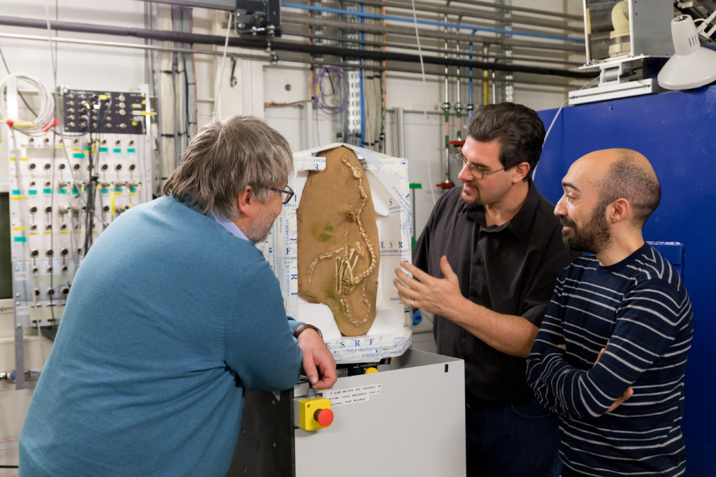 Paleontologists Pascal Godefroit, Paul Tafforeau and Andrea Cau (from left to right) set up the Halszkaraptor escuilliei fossil at the European Synchrotron Radiation Facility. Photo by P. Jayet for ESRF