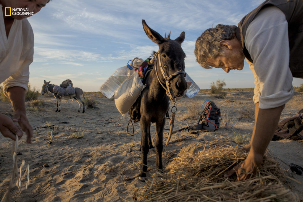 National Geographic Fellow Paul Salopek feeds his donkey Mouse after another day footslogging through Uzbekistan's Qizilqum desert. The sands were littered with potsherds from centuries of prior caravans. Follow his global storytelling walk online at OutofEdenWalk.org and on Twitter (@PaulSalopek). Photo by John Stanmeyer/National Geographic