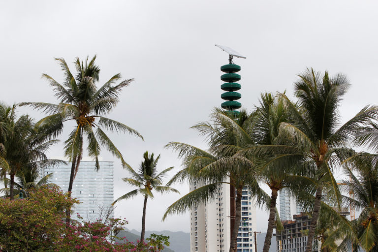 A tsunami warning tower is seen nestled in between palm trees at Kakaako Waterfront Park in Honolulu