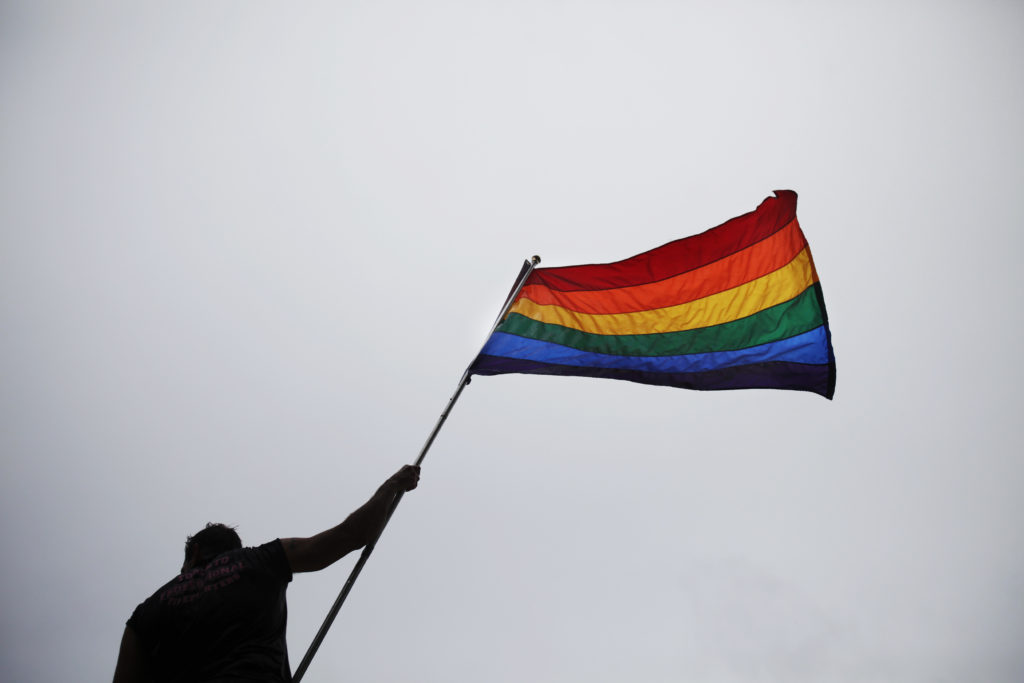 A man holds a flag as he takes part in an annual Gay Pride Parade in Toronto June 28, 2009. REUTERS/Mark Blinch (CANADA SOCIETY) - GM1E56T0IKS01
