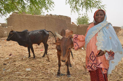 Aichatou Bako used a loan from the Mata Masu Dubara program in Niger to start a livestock business. Photo courtesy of CARE Niger