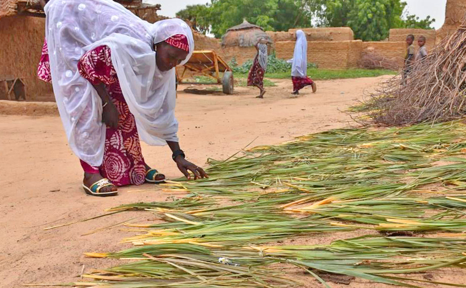 Latana Abdou from the village of Massaourari, Niger, cuts palm leaves to make rope. She used her loan to start a cattle-breeding business. Photo courtesy of CARE Niger