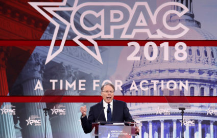 NRA Executive Vice President and CEO Wayne LaPierre speaks at the Conservative Political Action Conference (CPAC) at National Harbor, Maryland, U.S., February 22, 2018. REUTERS/Kevin Lamarque - RC1687A736A0