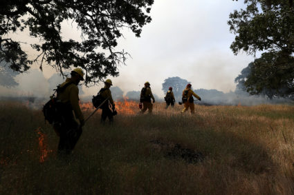 Firefighters monitor a controlled burn at Bouverie Preserve on May 30, 2017 in Glen Ellen, California. Cal Fire, U.S. Forest Service and local firefighters conducted a controlled burn as fire crews throughout the state of California prepare for what is expected to be a busy wildfire season. (Photo by Justin Sullivan/Getty Images)