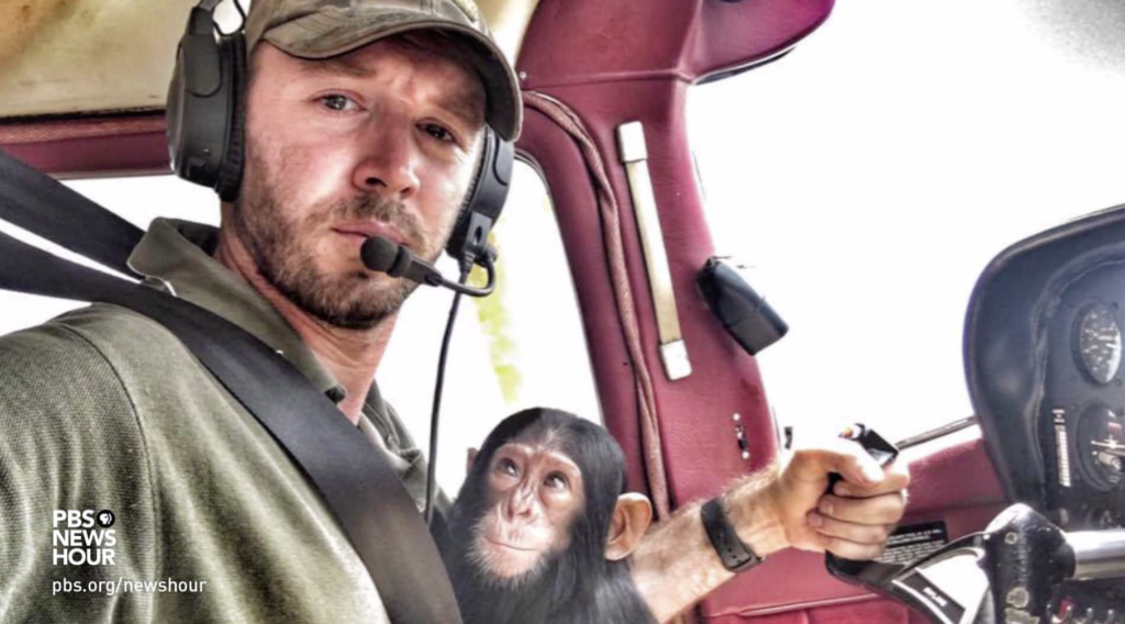 Pilot of chimp's cuddly plane trip wishes it never happened