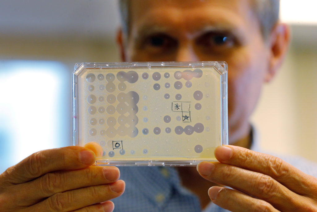 Dr. Kim Lewis, co-founder of biotechnology company NovoBiotic Pharmaceuticals, Director of Antimicrobial Discovery Center at Northeastern University, and lead scientist on the team that discovered the promising new antibiotic Teixobactin being developed at NovoBiotic, holds up a test of new, potential antibiotics at his lab in Boston, Massachusetts, U.S., November 17, 2016.
